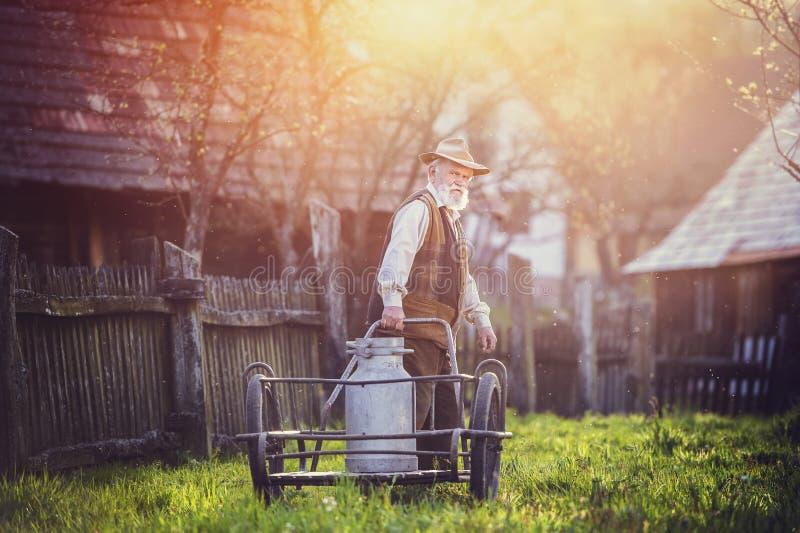 Rolnik z dojnym czajnikiem zdjęcie royalty free
