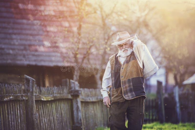 Rolnik z dojnym czajnikiem zdjęcia stock