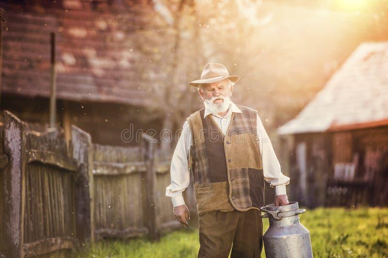 Rolnik z dojnym czajnikiem obrazy stock