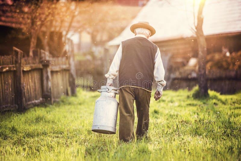 Rolnik z dojnym czajnikiem zdjęcia royalty free