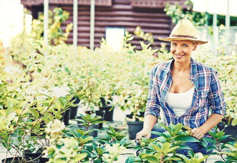 Rolnik z roślinami zdjęcie stock