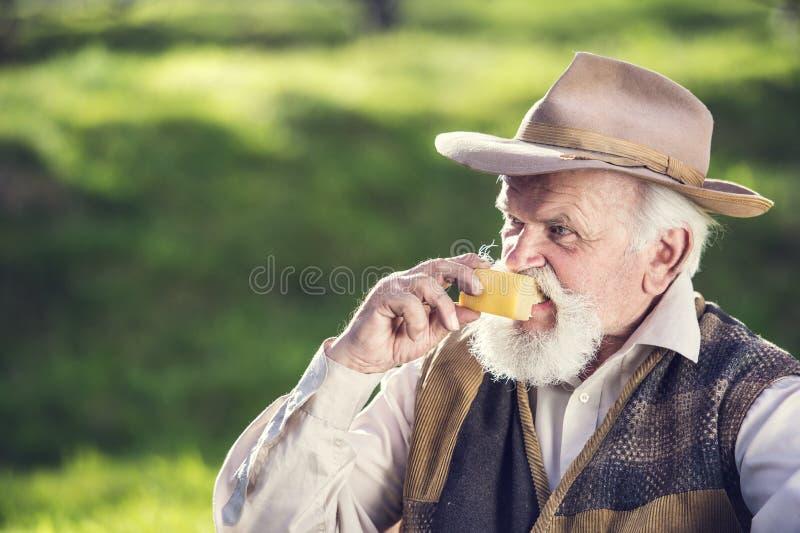 Rolnik z serem zdjęcie stock