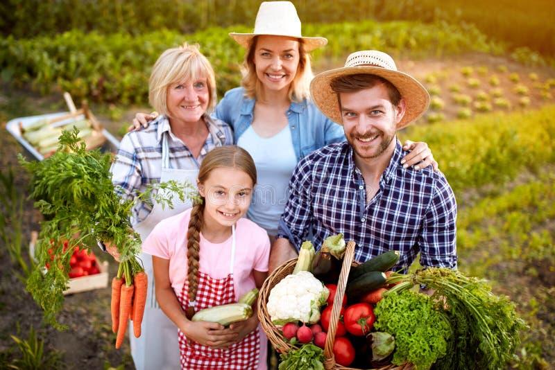 Rolnika mienia rodzinni warzywa od ogródu fotografia stock