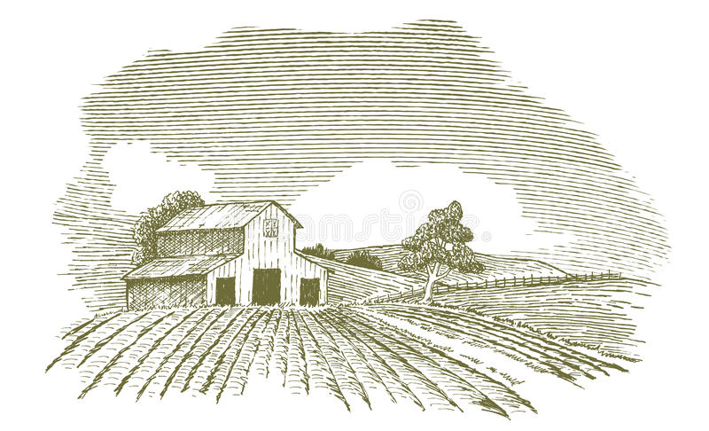 Rolny krajobraz z stajnią ilustracja wektor