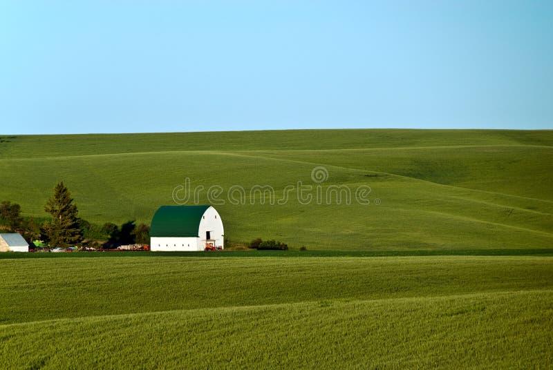 rolny palouse obraz stock