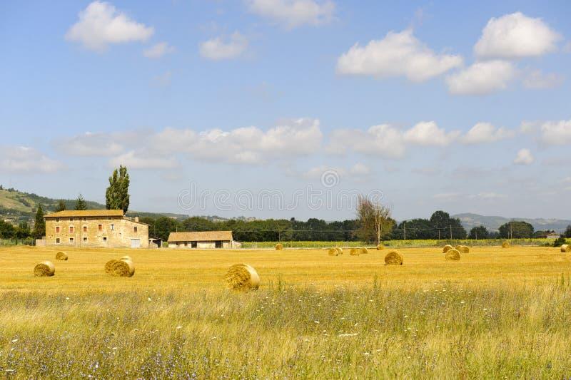 rolny Umbria zdjęcie royalty free