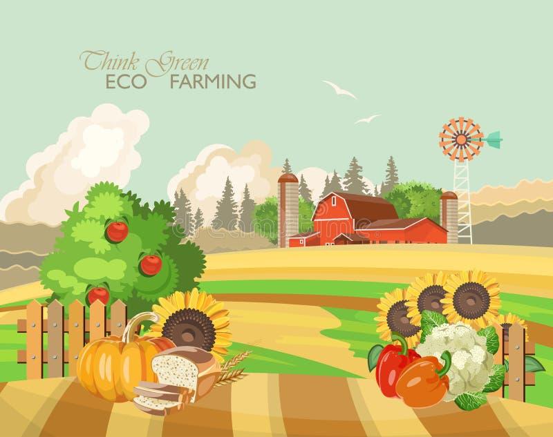 Rolny wiejski krajobraz z warzywami Rolnictwo wektoru ilustracja kolorowa wieś Plakat z retro wioską i gospodarstwem rolnym royalty ilustracja