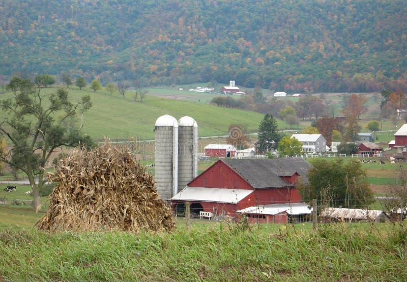rolnych amisze sceniczny obrazy stock