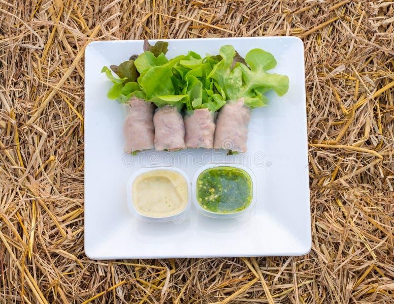 Rolo da salada verde e carvalho vermelho orgânico com atum e molho de enchimento fotos de stock
