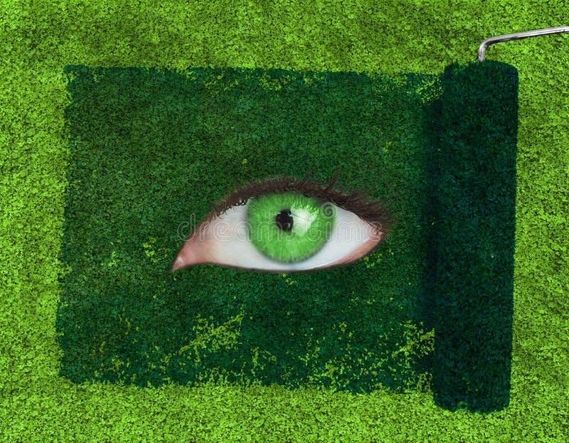 Rolo de pintura que revela um olho verde foto de stock royalty free