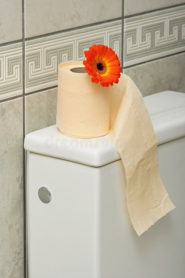 Rolo de toalete fotografia de stock royalty free