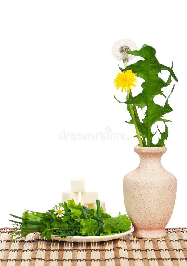Rolos vegetais fotografia de stock royalty free