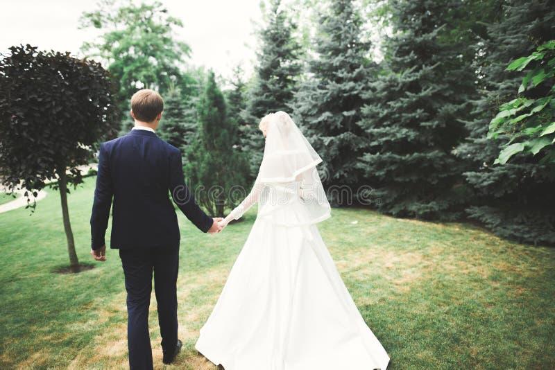Romántico, cuento de hadas, pares felices del recién casado que abrazan y que se besan en un parque, árboles en fondo imagenes de archivo