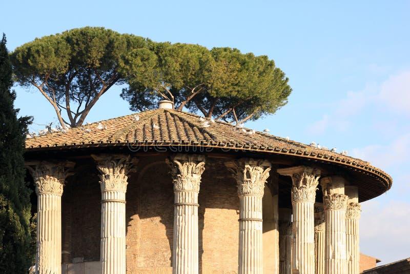 Romańska świątynia Hercules zwycięzca w forum Boarium w Rzym, Włochy zdjęcie royalty free