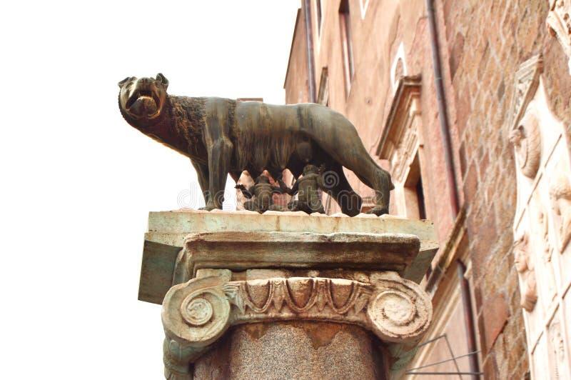 Roma, Italia 7 de octubre de 2018: el lobo de Capitoline, una estatua de un lobo que amamanta al fundador de Romulus de Roma y de fotografía de archivo libre de regalías