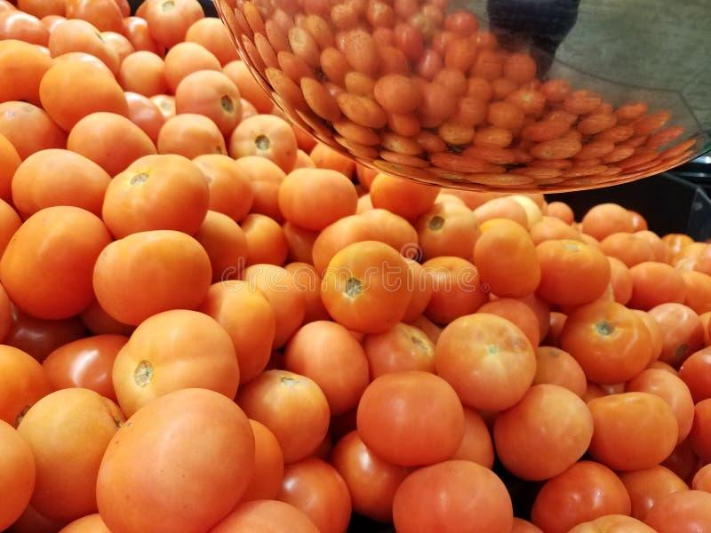 Roma Tomatoes photographie stock libre de droits