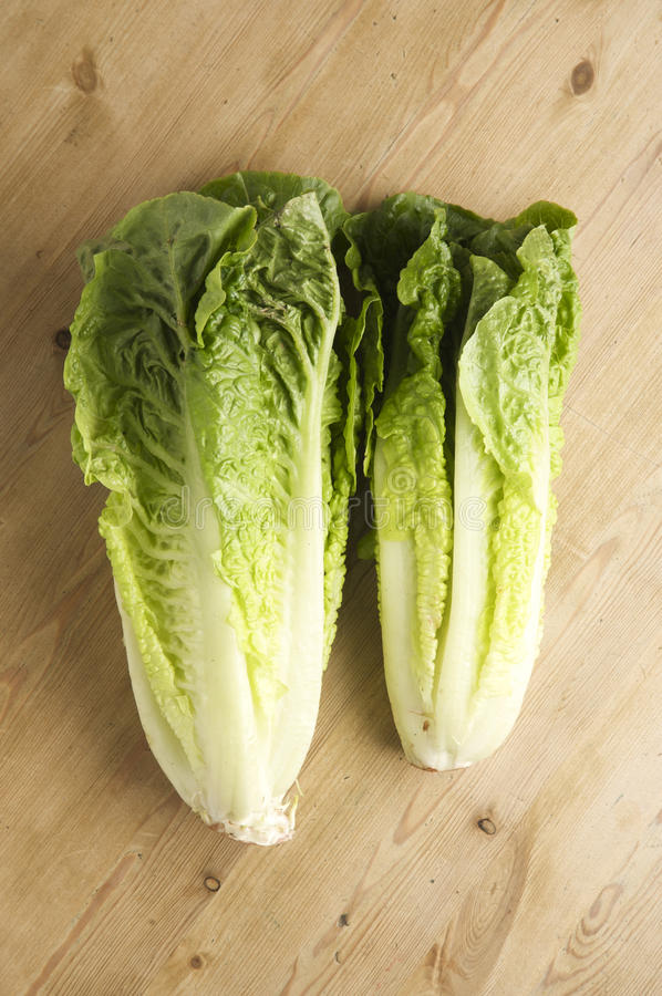 Romaine Lettuce. On a wooden kitchen table, lit with a large light source from the right royalty free stock photos