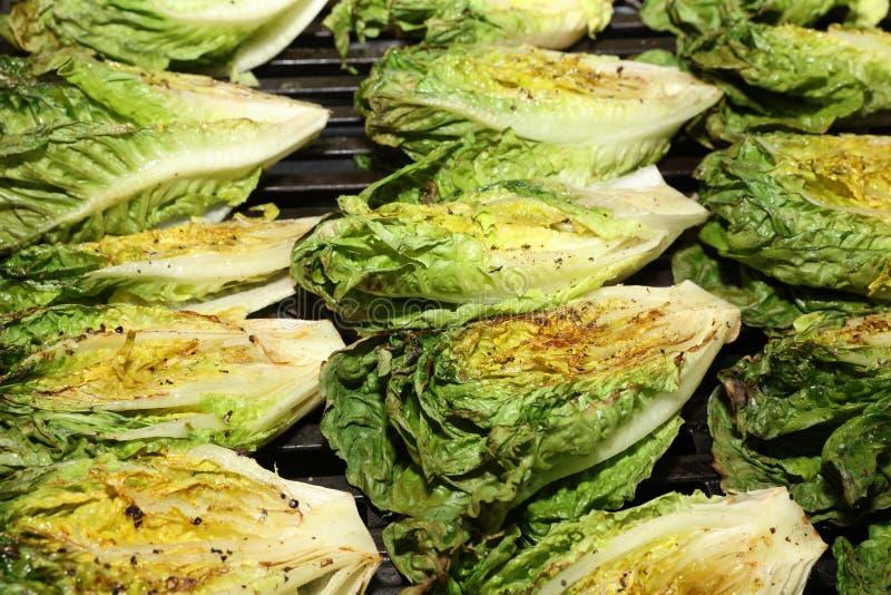 Romaine Lettuce Hearts. Fresh grilled organic hearts of Romaine Lettuce stock photo