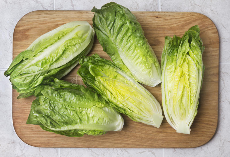 Romaine lettuce. On kitchen board stock images