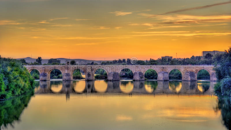 Roman Bridge across the Guadalquivir river in Cordoba, Spain. The Roman Bridge across the Guadalquivir river in Cordoba, Spain stock image