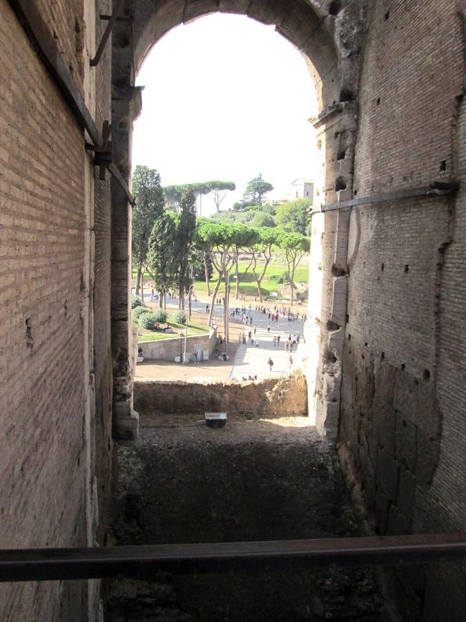 Roman Colosseum Partial sikt från ett av fönstren av den forntida amfiteatern på en härlig solig dag Rome Italien royaltyfria bilder
