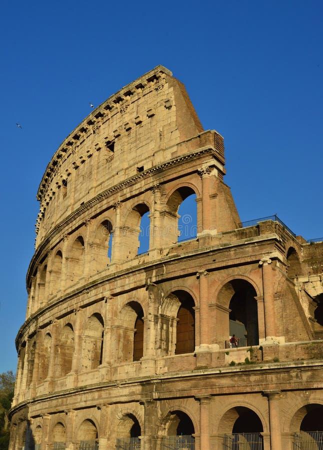 Roman colosseum, Rome, Italy stock photo
