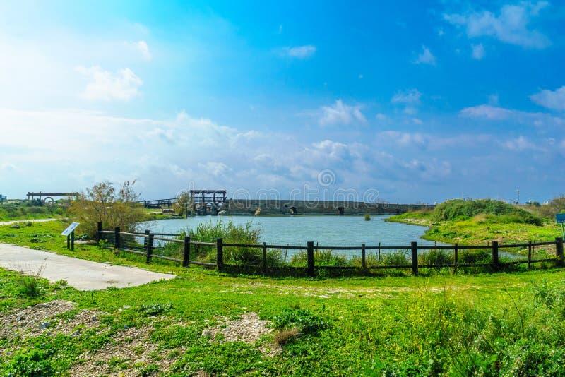 Roman eradam en een pool, Taninim-Stroomnatuurreservaat stock foto