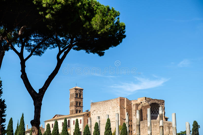 Roman Forum in Rome stock fotografie