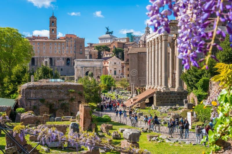Roman Forum under v?rs?song i en solig dag italy rome arkivfoton