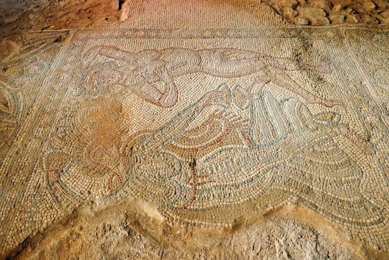 Roman Fresco Mosaic Tiles antico alle rovine archeologiche a città di frontiera Moabite di Madaba, Jor fotografia stock libera da diritti