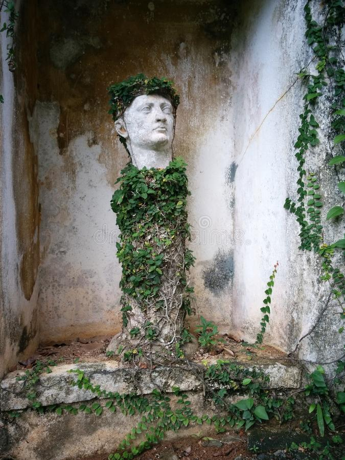 Roman head - Lunuganga royalty free stock photos