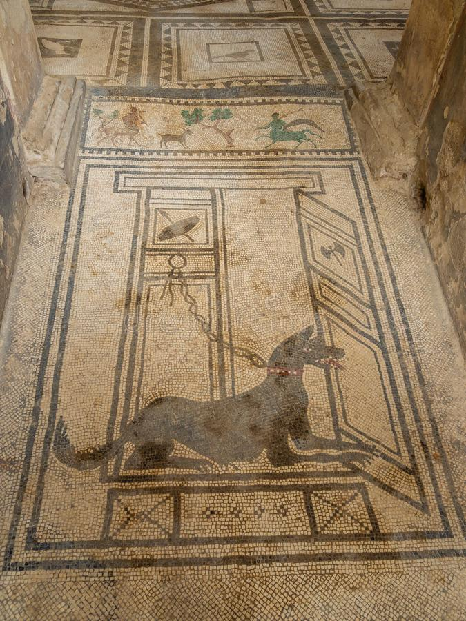 Roman mosaics in Pompeii, Italy. World Heritage List. Details of mosaic in ruined Roman villa in the ancient Roman city of Pompeii, near modern Naples in Italy stock photos
