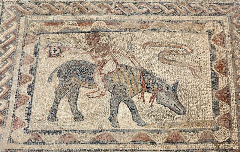 Roman mozaïek in Volubilis royalty-vrije stock fotografie
