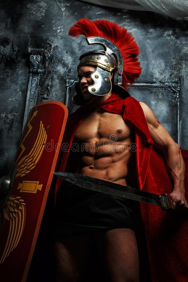 Roman muscular warrioir with sword and shield royalty free stock photo