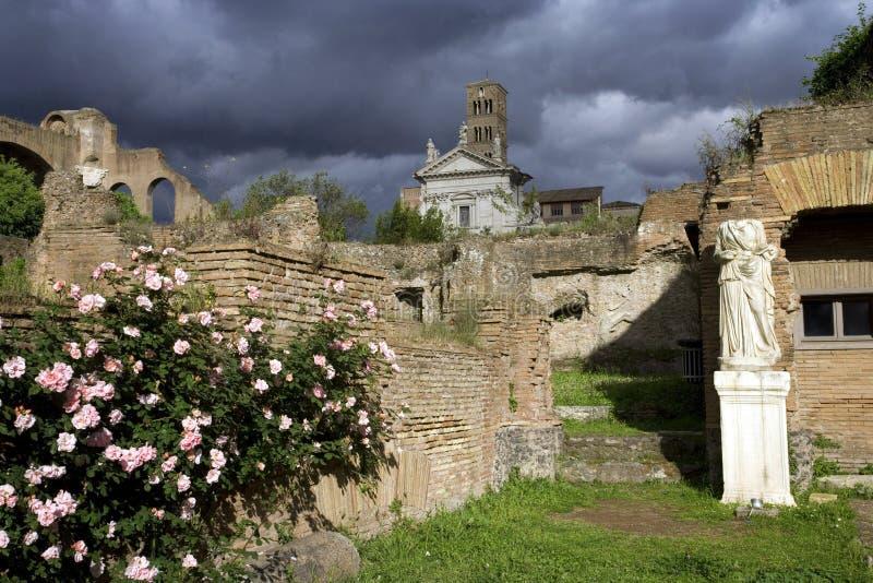 Roman Palatine de antiquiteitenheuvel van forumitalië Rome nam Bush-beeldhouwwerk marmeren onweerswolken toe royalty-vrije stock foto