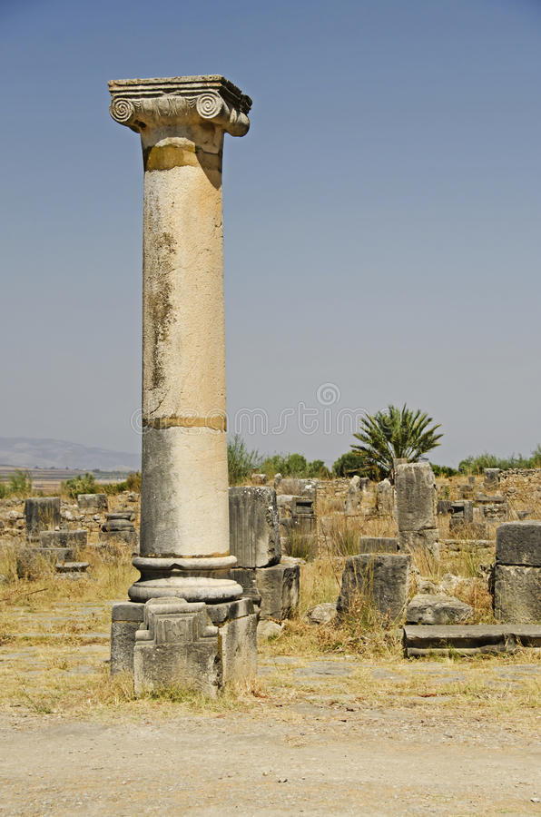 Roman Ruins royaltyfri bild