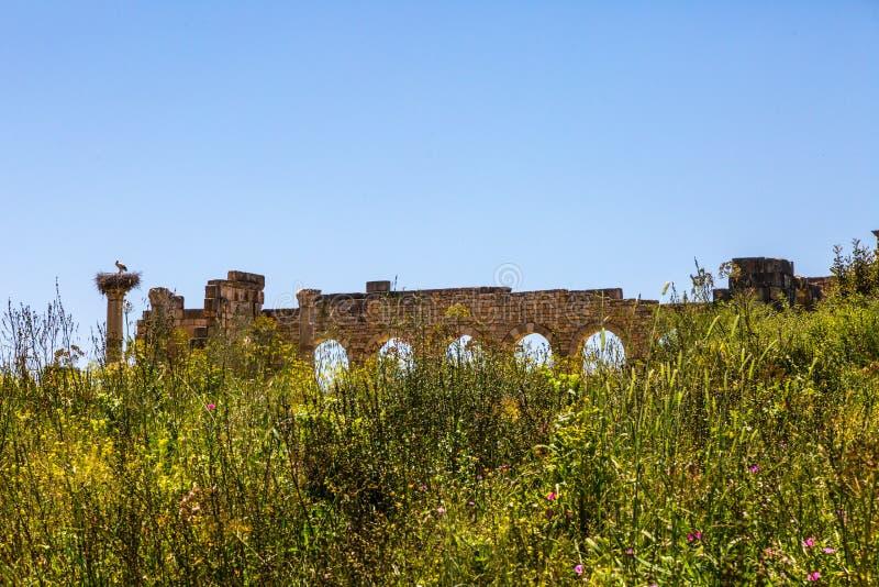 Roman Ruins en Afrique du Nord photographie stock