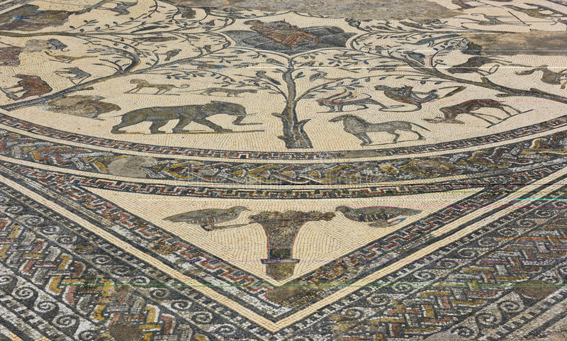 Roman ruins at Volubilus, Morocco. Well preseved mosaic floor tiles at the 2000 year old Roman ruins near Fez in Morocco royalty free stock images