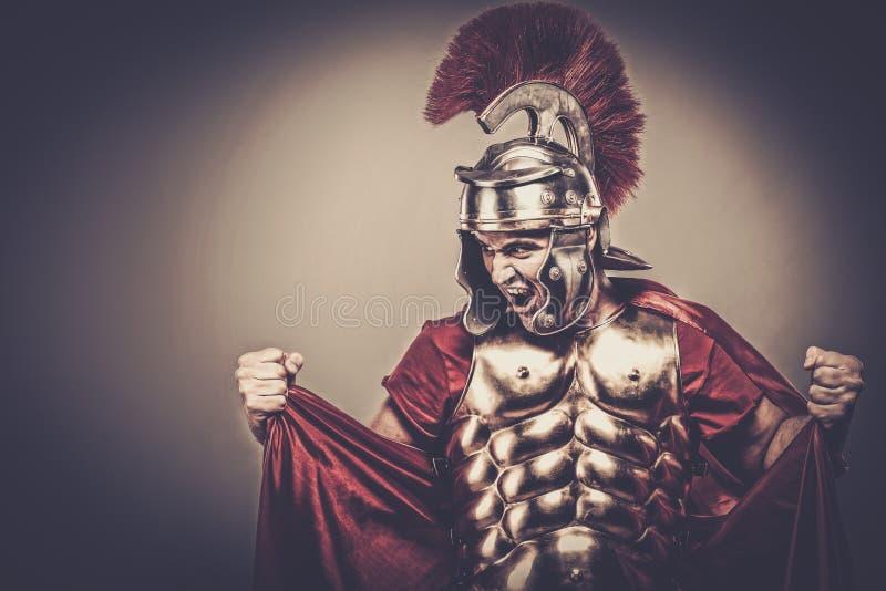 roman soldat för legionary royaltyfri fotografi