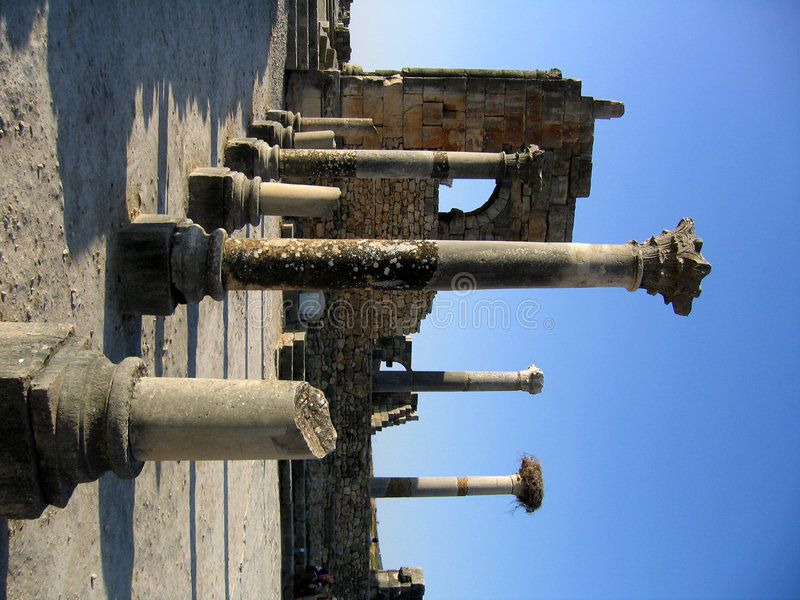 roman tempelvolubilis royaltyfri fotografi