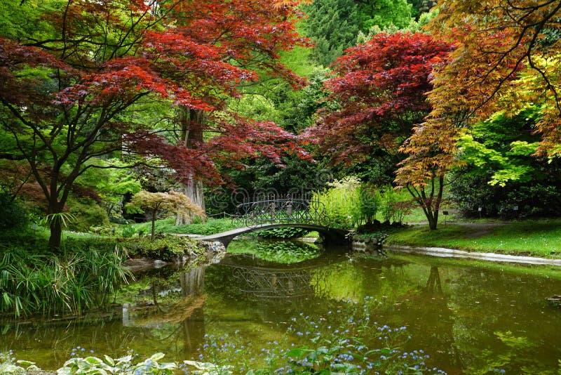roman Un fragment des jardins de la villa Melzi photos libres de droits