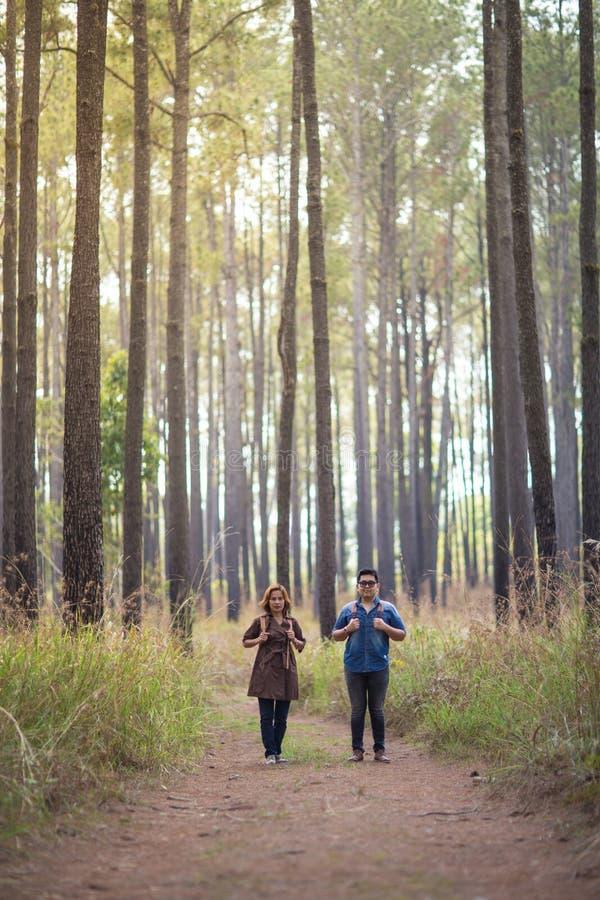 Romance в лесе стоковая фотография