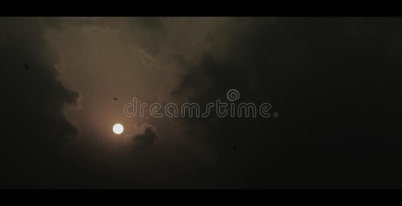 Romance в луне и птицах неба стоковое фото