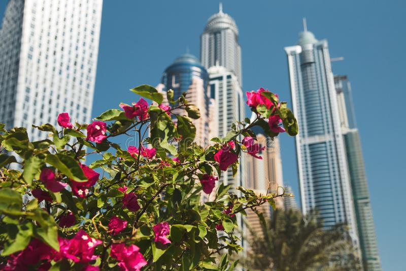 Romance del viaje de la arquitectura de Dubai imágenes de archivo libres de regalías
