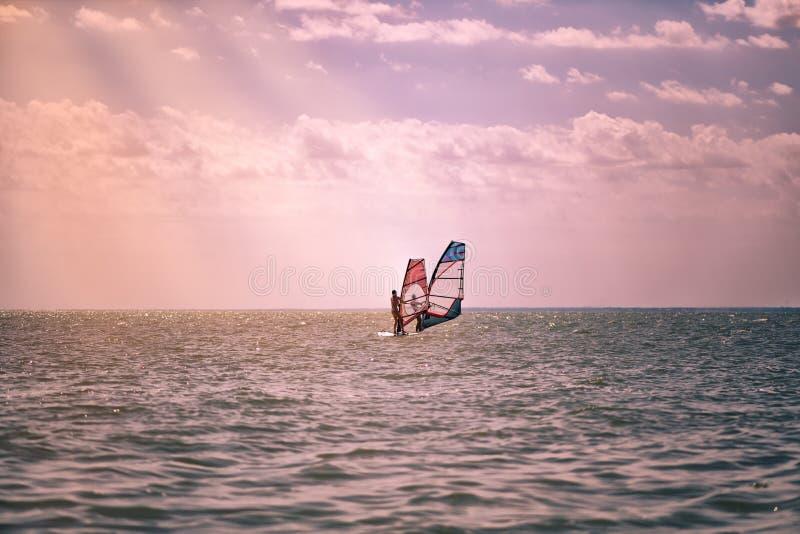 Romance no homem e na mulher dos pares do mar que navegam junto em uma placa do windsurfe quando em férias no sul fotografia de stock