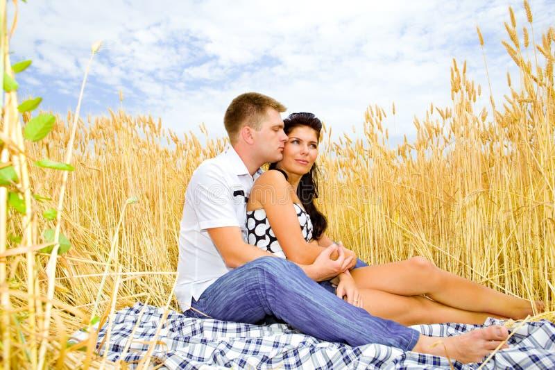 Romance no trigo imagem de stock