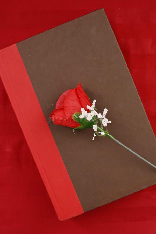 Romance Novel royalty free stock images