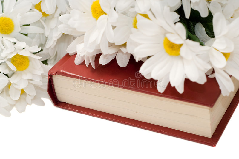 Download Romance Novel stock image. Image of bunch, nature, novel - 8725649