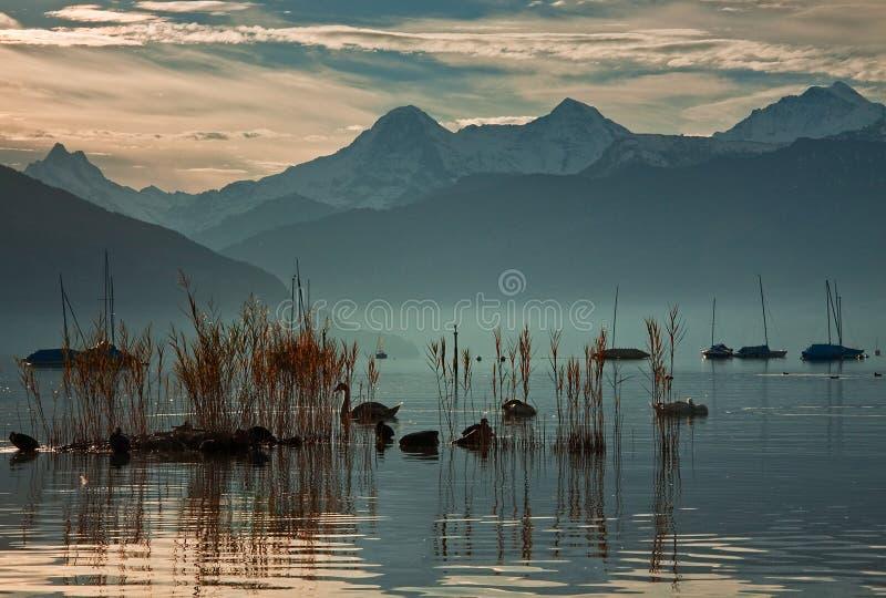 Download Romance on the Thun stock photo. Image of lake, mountains - 16372182
