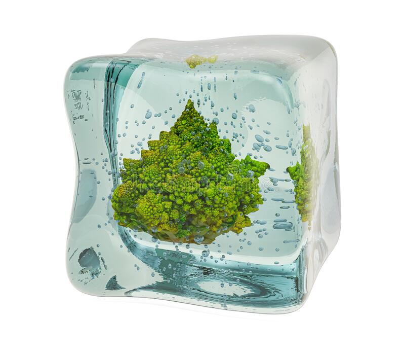 Romanesco broccoli, bevroren in ijskubus, 3D rendering royalty-vrije stock fotografie